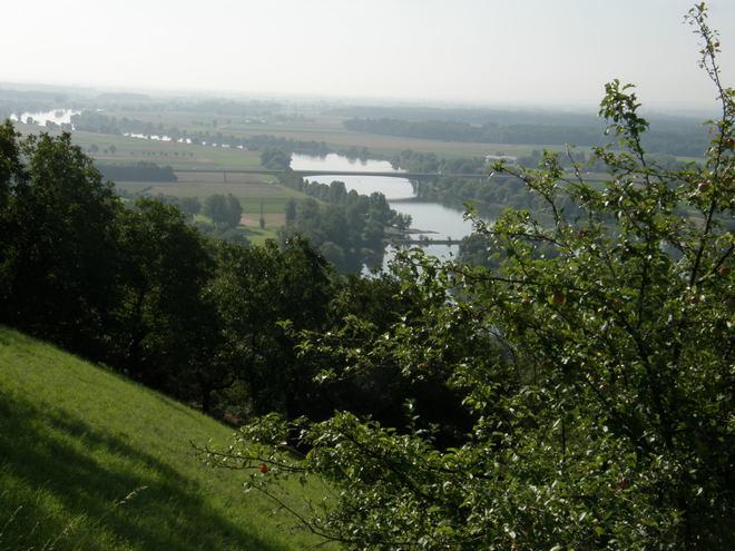 Bogenberg (© Hans Wieser)