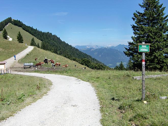 Zurückgelegte Strecke 2500 m