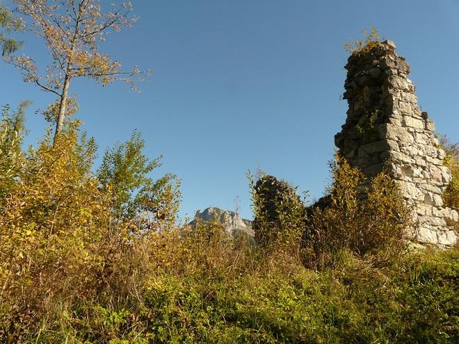 Ruine Pflindsberg (© H. Rastl)