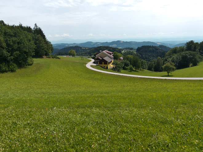 Donausteig-Gipfel Panoramablick Wetzelstein (© WGD Tourismus GmbH / Kranzmayr)