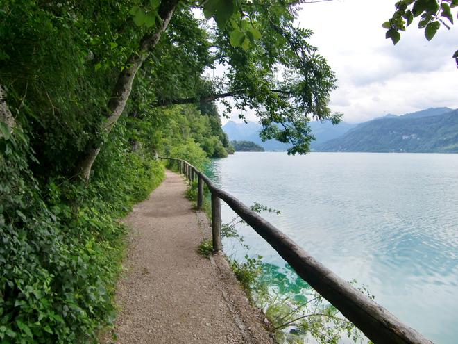 Entlang am Weg am See (© WTG)