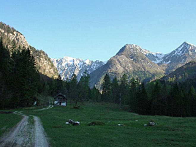 Bärenpfad 04 (© Wolfgangsee Tourismus)