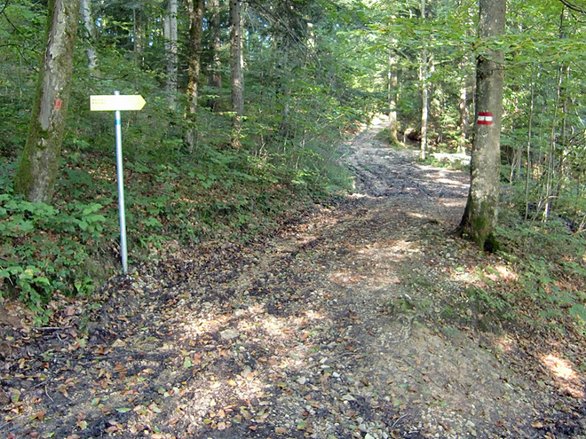 Abzweigung Römerweg