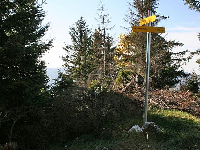 Wegpunkt 20 (© Wolfgangsee Tourismus)