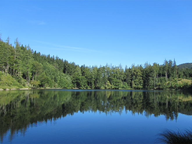 Eibensee (© Tourismusverband MondSeeLand)