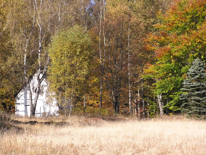 Rosenhof im Herbst (© Gemeinde Sandl)