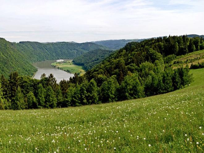 Panoramablick Kerschbaum (© WGD Tourismus GmbH_Projektkraft)