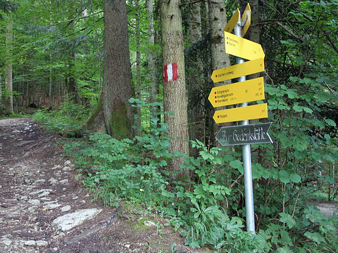 006 (© Wolfgangsee Tourismus)