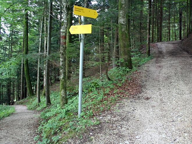 Wegpunkt 05 (© Wolfgangsee Tourismus)