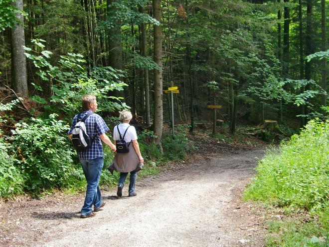 Abzweigung zum Rieder Steig (© WTG)