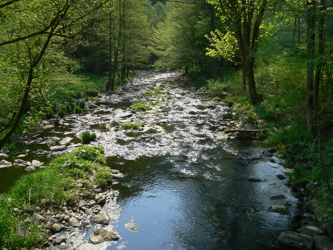Naturschutzgebiet Rannatal (© TV Neustift)