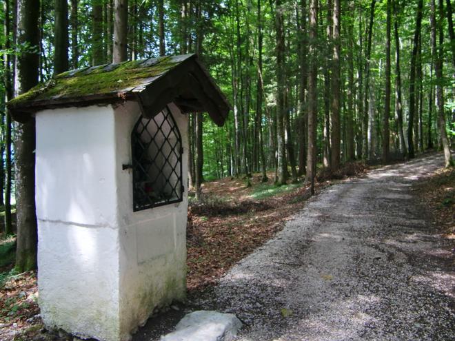 Waxweicher Stein (© WTG)
