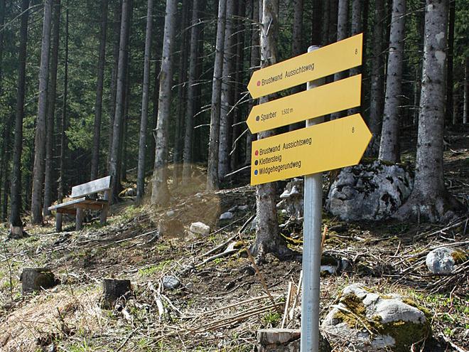 Abzweigung Wildgehegeweg