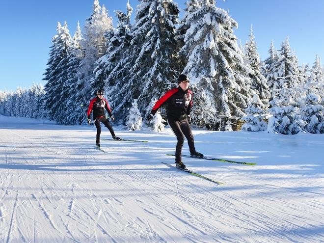 Langlaufen im Böhmerwald (© OÖ Tourismus / Röbl)