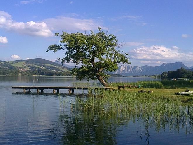 Fischhof (© Rothner Tatjana)