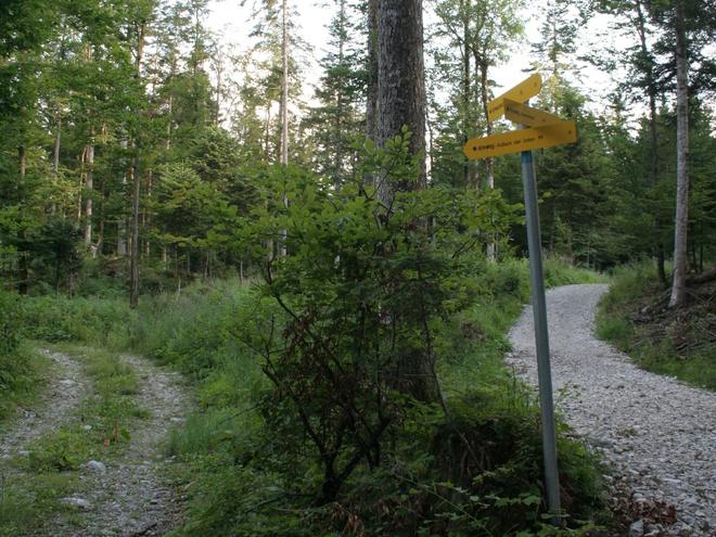 Einmündung Weg Nr. 31 von Rußbach (© Manfred Grabner)