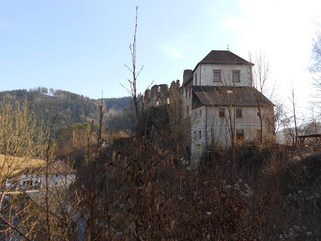Burgruine Westansicht (© burg-reichenstein.at)