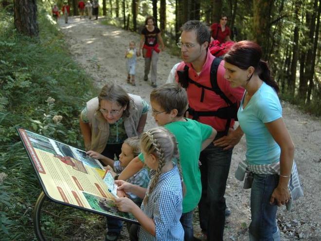 The bear path in Faistenau (© Tourismusverband Faistenau)