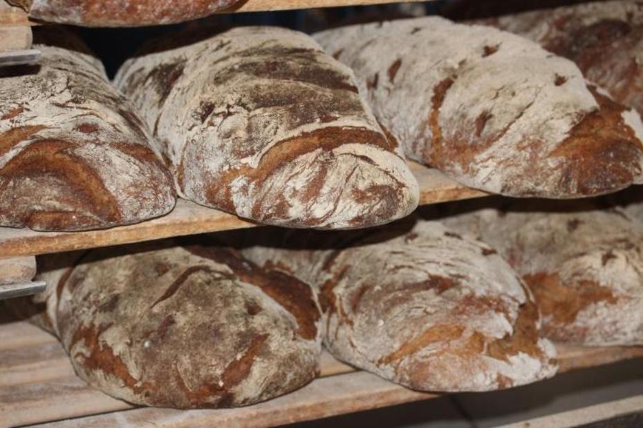 Täglich frisch gebackenes Brot von unserem Bäckermeister.
